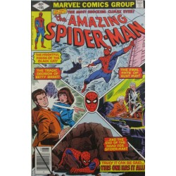 THE AMAZING SPIDERMAN Núm 195