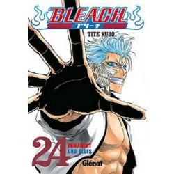 BLEACH Núm 24