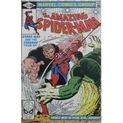 THE AMAZING SPIDERMAN Núm 217