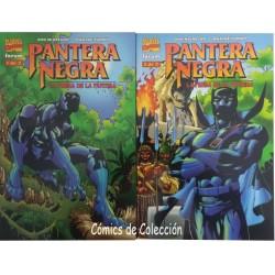 PANTERA NEGRA: LA PRESA DE LA PANTERA COMPLETA