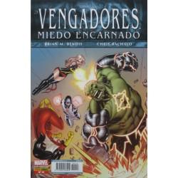 LOS VENGADORES Núm 14
